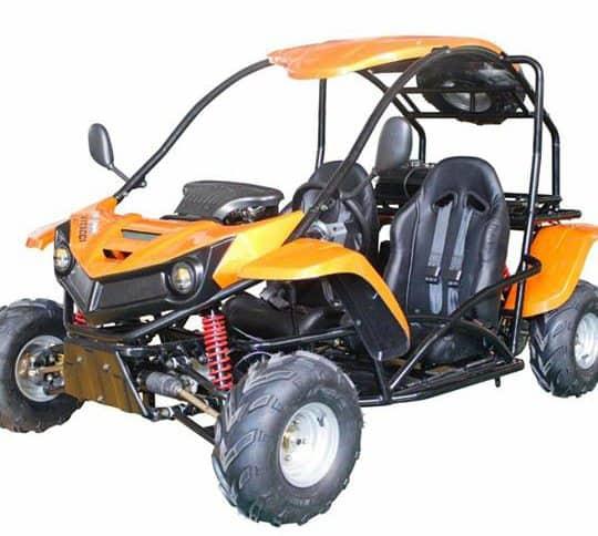 T-Rex 125cc Go Kart